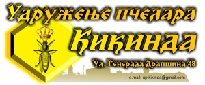 logo upk