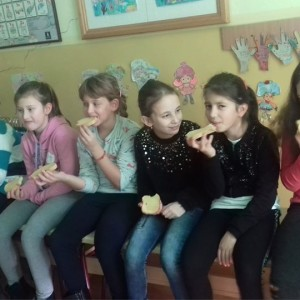 """ОШ """"Иво Лола Рибар"""" Нови Козарци"""